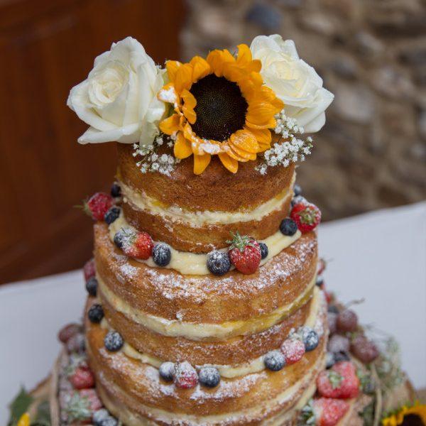 devon_wedding_photography-32