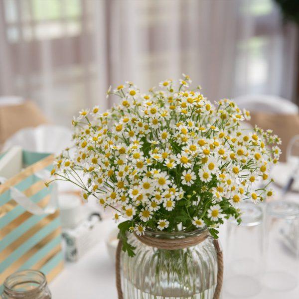 devon_wedding_photography-34